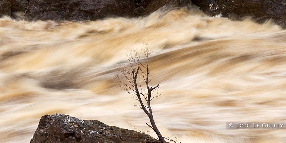 Franklin River in flood