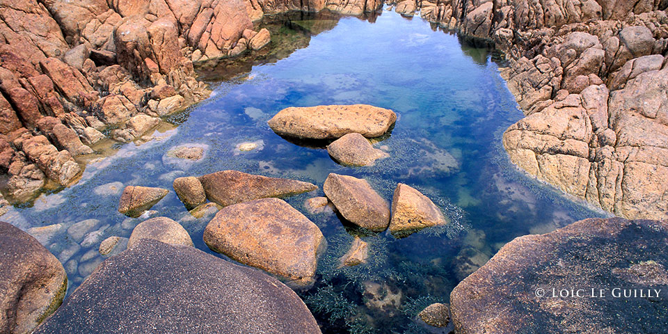 Tarkine rock pool